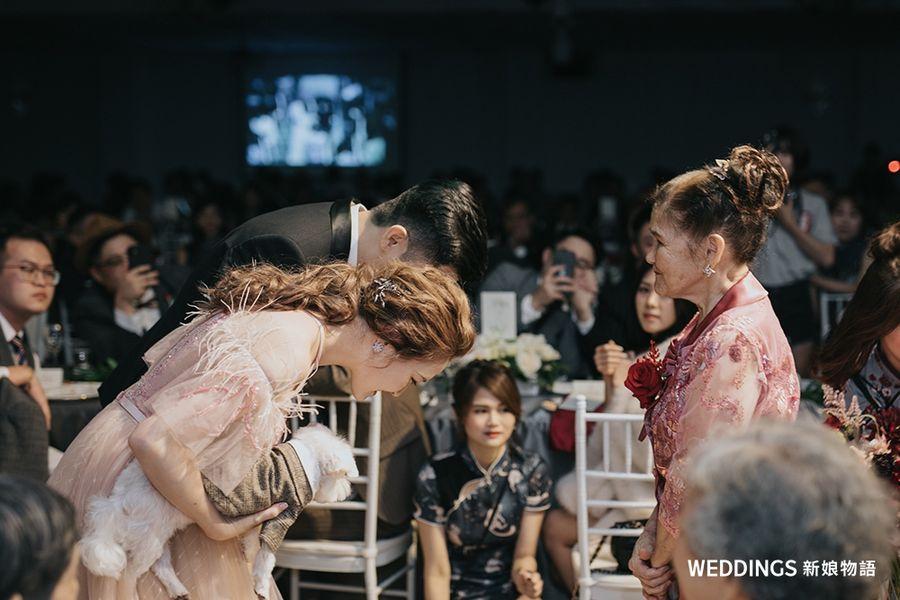 晶麒莊園,學姊分享,新人分享,婚禮分享,晶麒莊園,戶外婚禮,晶麒莊園文定,桃園戶外婚禮場地