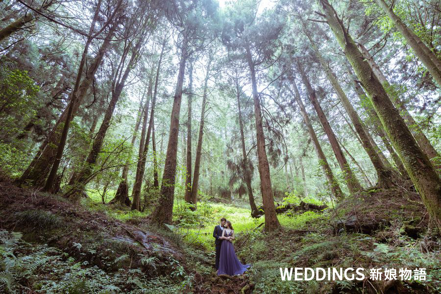 阿里山,婚紗,神木下婚禮